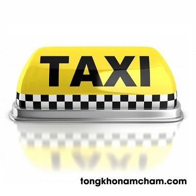 Mào từ taxxi nam châm