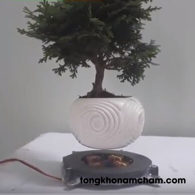 Nam châm bonsai bay 1kg